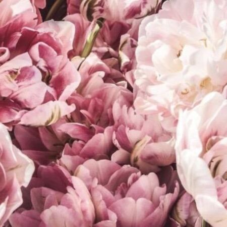 Pink flowers duolegaat 2